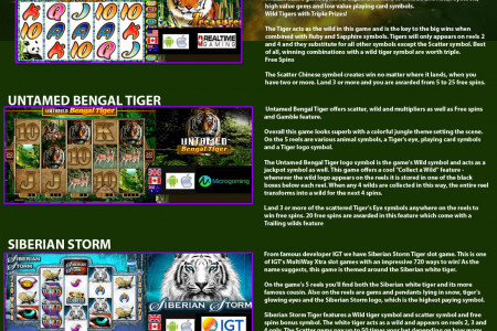 Best Tiger Slots Games Infographic