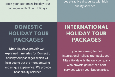 Best Tour & Travel Agency in Delhi - Nitsa Holidays Infographic