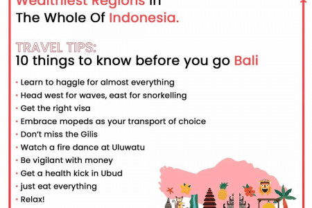 Best Travel Tips for your Holiday Trip and International Tour Infographic