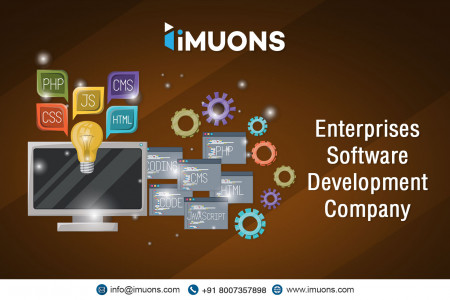 Best Web Application Solutions by iMUONS Infographic