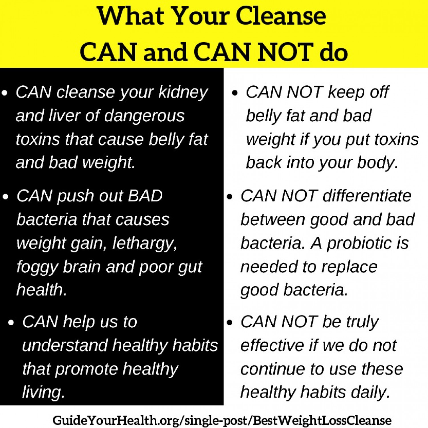 Best Weight Loss Cleanse Infograph Infographic