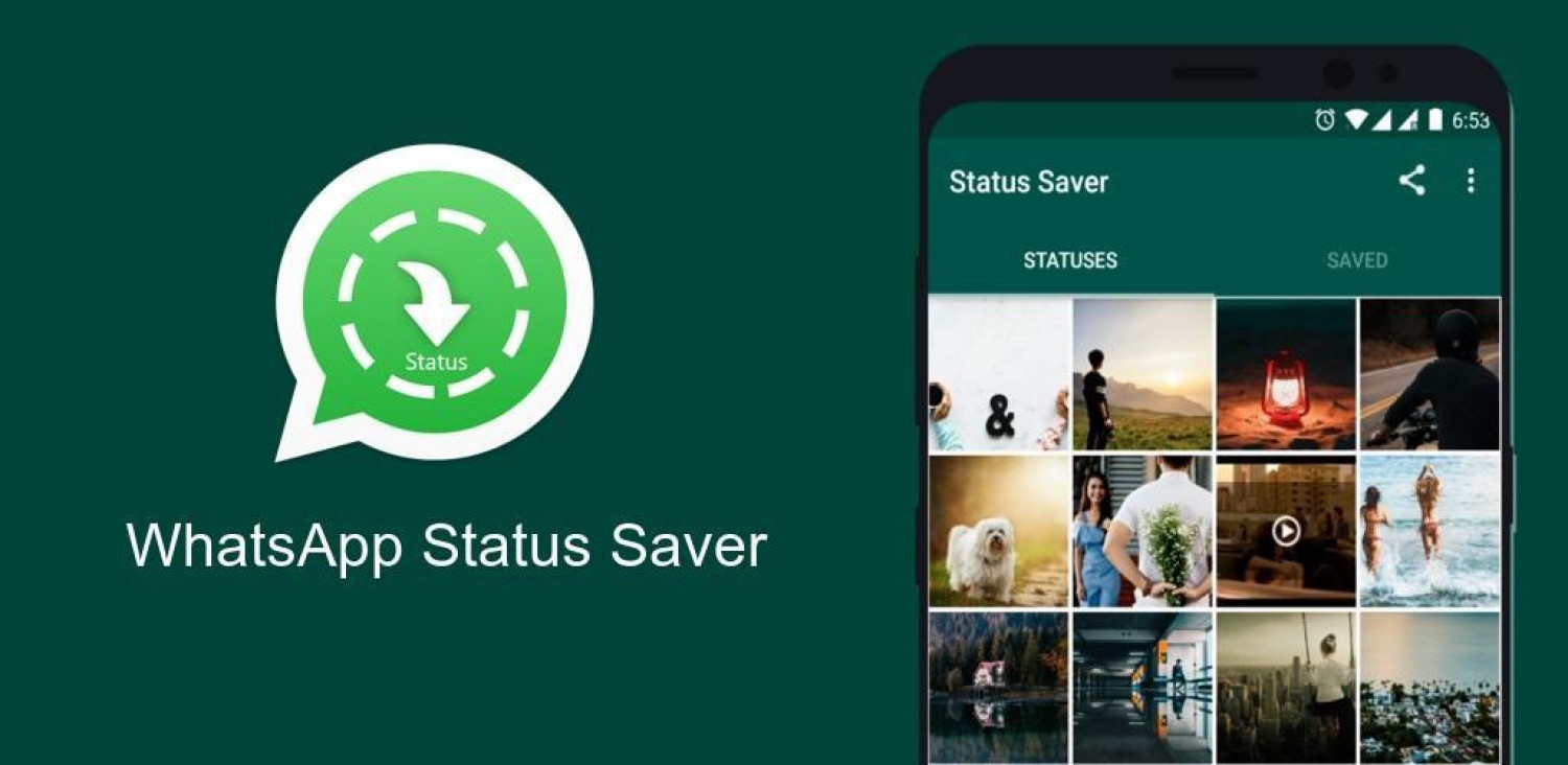 Best Whatsapp Status Saver Infographic