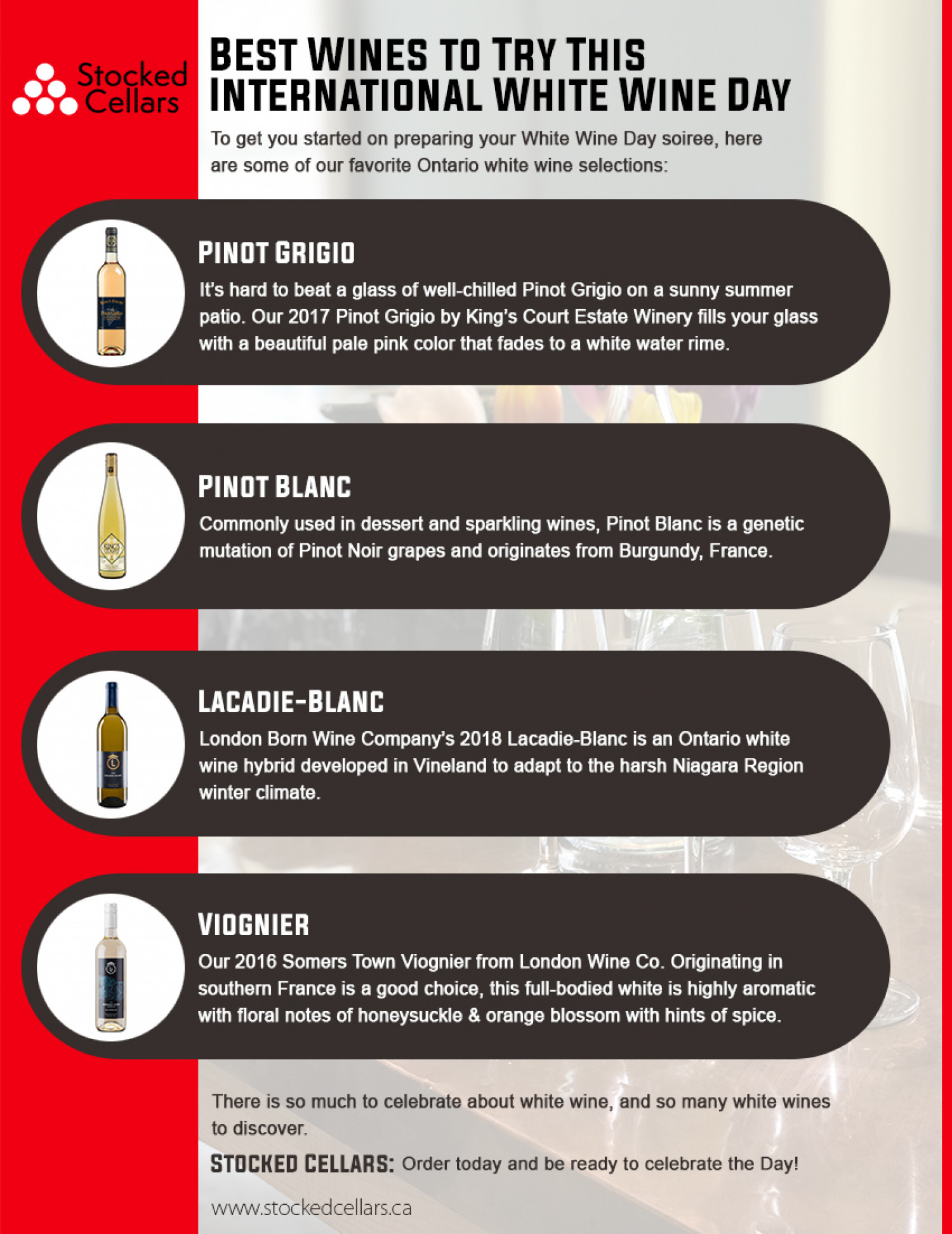Best Wines to Try This International White Wine Day Infographic