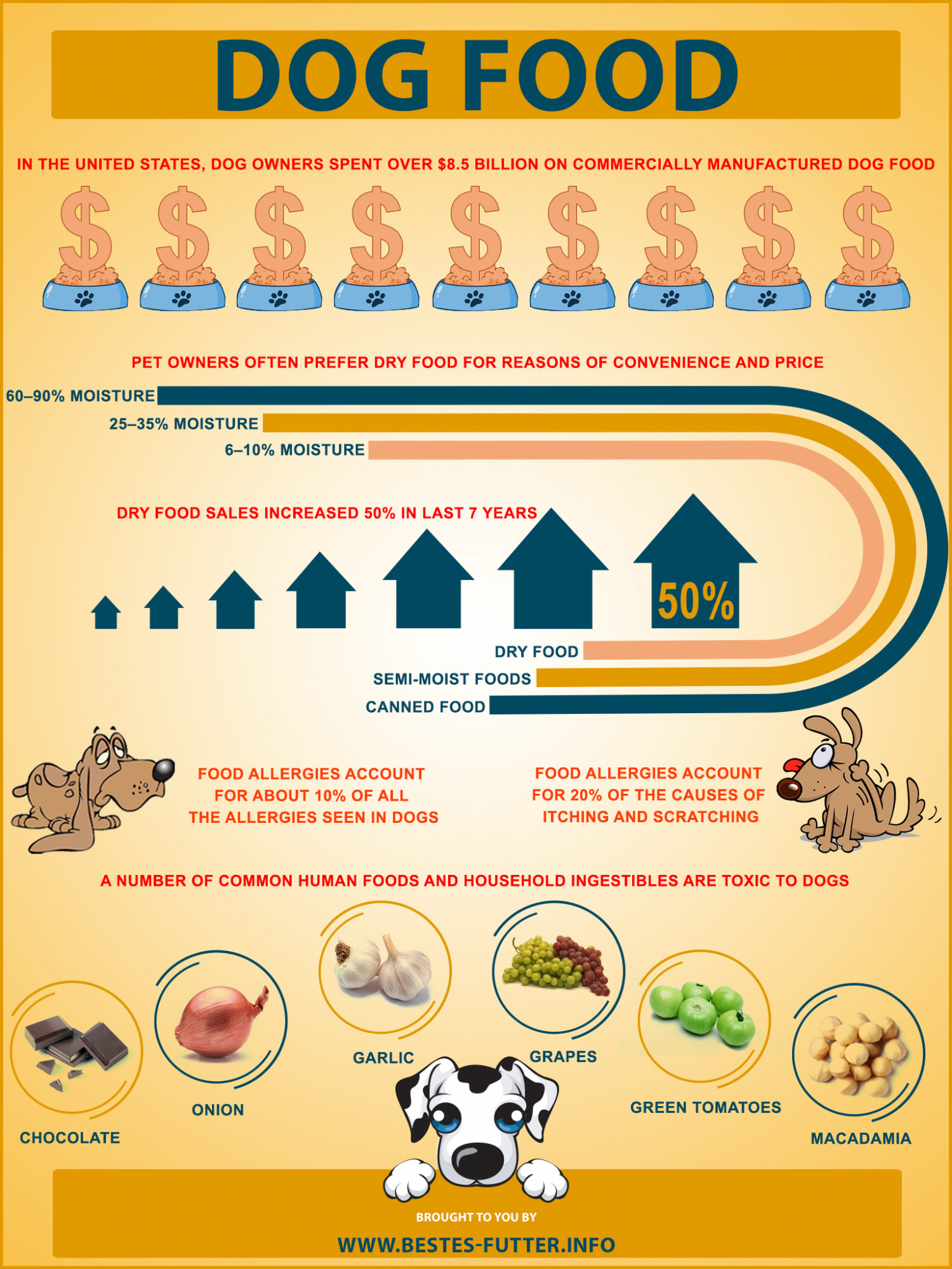 Bestes Futter, Infos about dog food Infographic