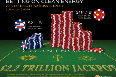 Betting on Clean Energy Infographic