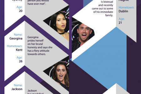 Big Brother 2016 Meet The Contestants  Infographic