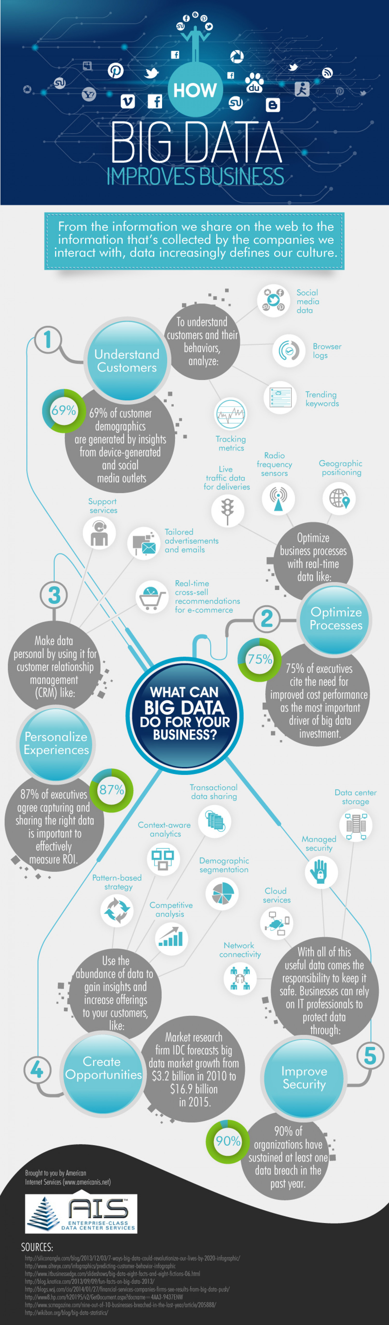 How Big Data Improves Business Infographic