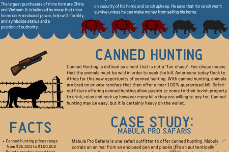 Big Game Hunting and its Effect on Conservation Infographic