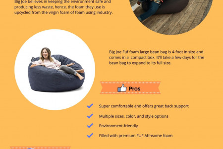 Big JOE Fuf Foam Filled Bean Bag Chair Reviews Infographic
