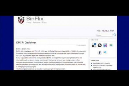 BinFlix Description Video Infographic