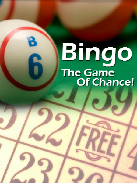 Bingo is the Game of Chance! Infographic