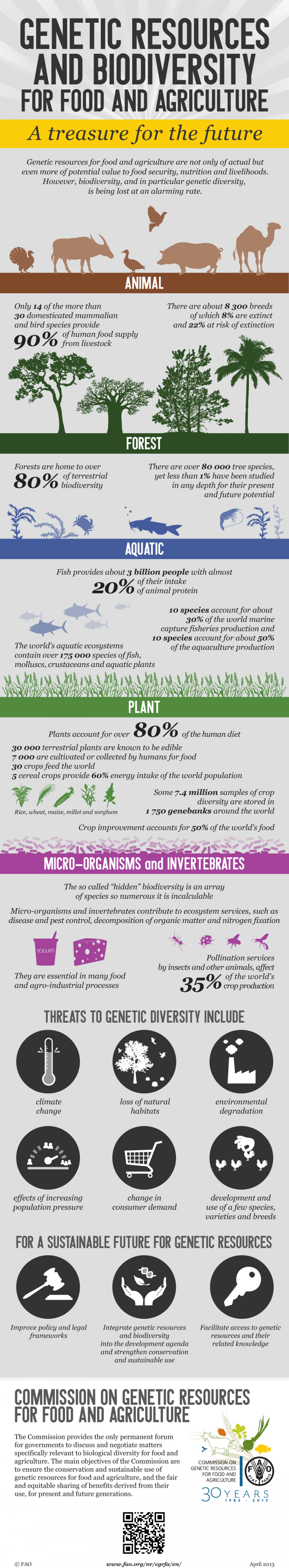 Genetic Resources and Biodiversity for Food and Agriculture  Infographic