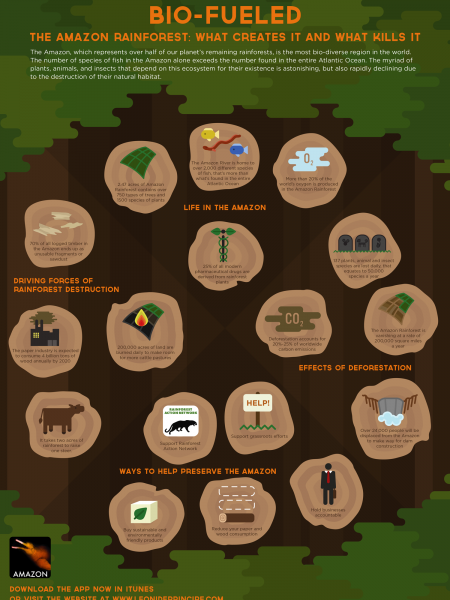 Bio-Fueled Infographic