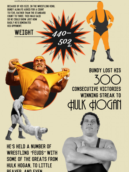 Birthday Wishes to King Kong Bundy Infographic