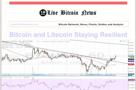 Bitcoin and Litecoin Staying Resilient Infographic
