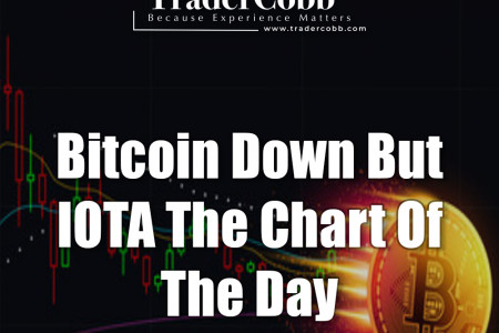 Bitcoin Down But IOTA The Chart Of The Day Infographic