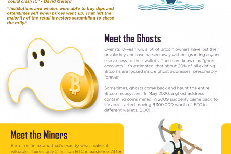 Bitcoin Facts Infographics Infographic