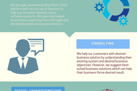 Bitscape Business Solution Services (Infographic) Infographic