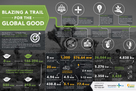 Blazing a Trail for the Global Good Infographic
