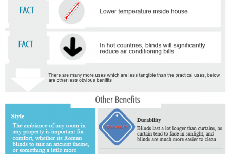 Blinds Infographic