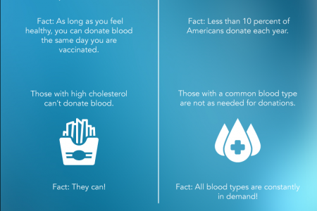 Blood Donation Myths and Facts Infographic