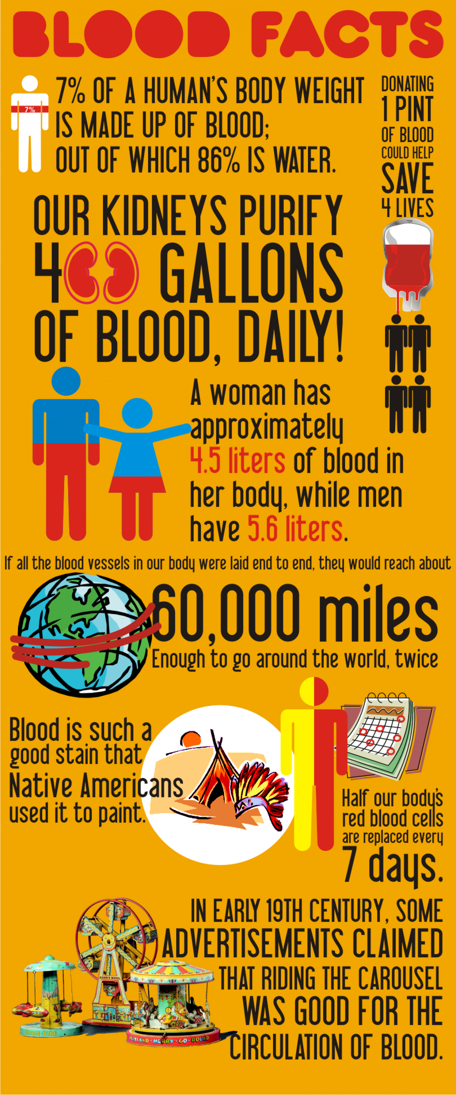 Blood Facts Infographic