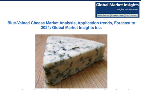 Blue-Veined Cheese Market Size, Applications Share and Trends 2017-2024 Infographic