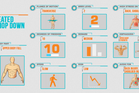 Body Exercises  Infographic
