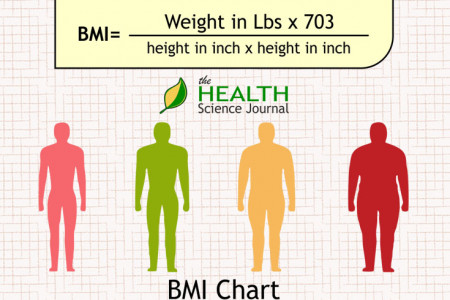 Body Mass Index (BMI) Infographic