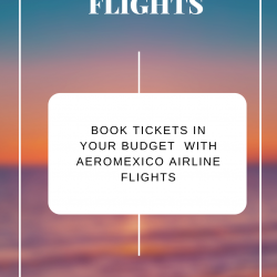 Book tickets in your budget  with Aeromexico Airline Flights | Visual.ly