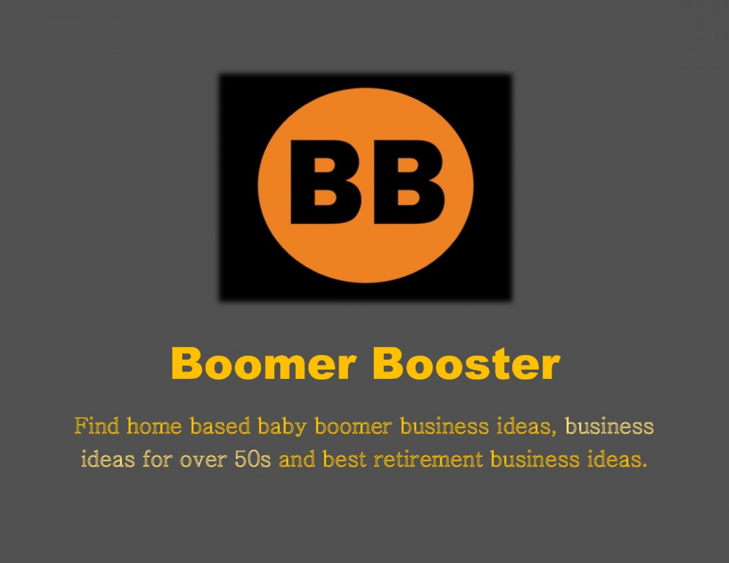Boomer Booster - Baby Boomer Business Ideas Infographic