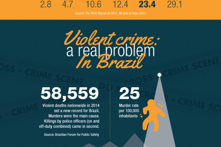 Brazil Summer Olympics Infographic