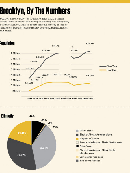 Brooklyn, By the Numbers Infographic
