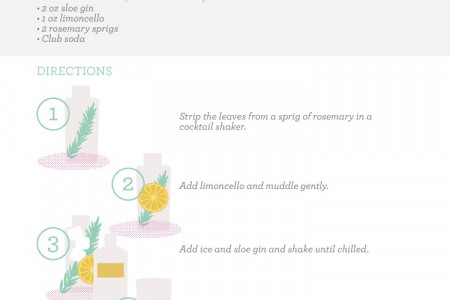Brunch Cocktails: Rosemary Sloe Gin Fizz Infographic
