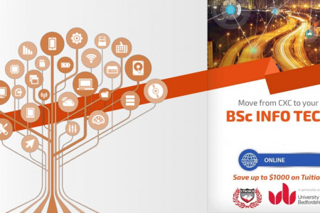 BSC Information Technology Trinidad - CTS College in Trinidad Infographic