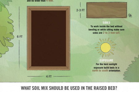 Build the Benefits of a Raised Bed Infographic
