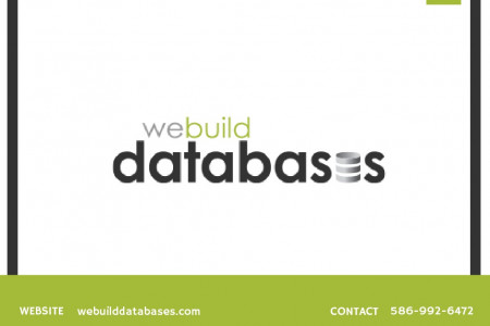 Build Your Custom Databases & Applications - Webuilddatabases.com Infographic
