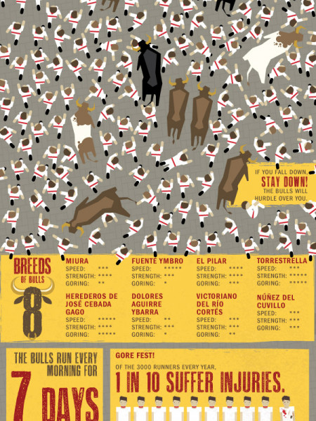 BULL vs BOLT Infographic