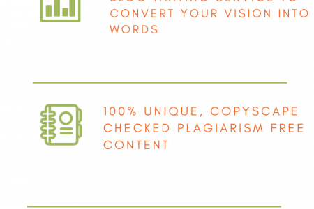 Business Blog Writer | Professional Blog Writer Infographic
