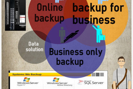 Business data solution providers Infographic