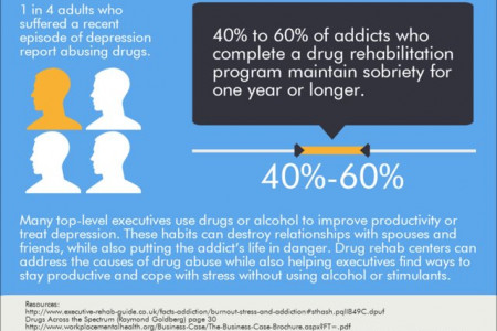 Business Executives and Mental Health Issues 3 Infographic