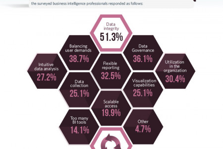 BUSINESS INTELLIGENCE CONSUMERIZATION Infographic