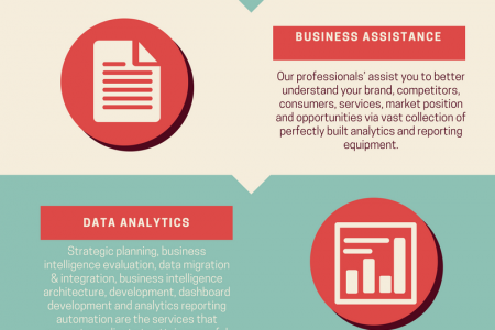 Business Intelligence Services Infographic