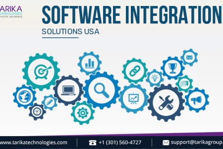 Business Software Integration Solutions in the USA Infographic