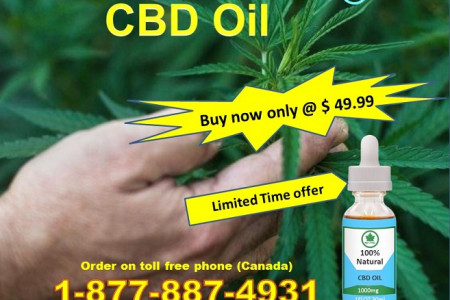 Buy CBD Oil 1000 mg With Heavy Discount in Canada Infographic