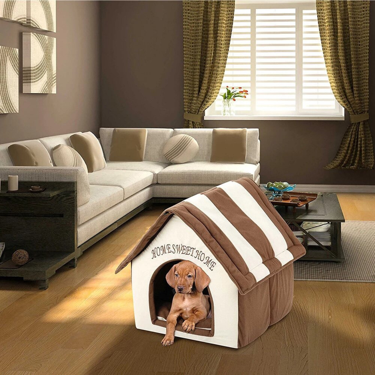 Buy the Best online Dog Houses with various Design Infographic