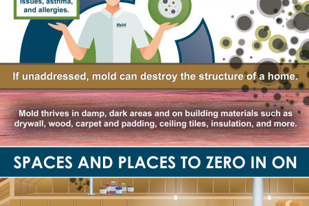 Buying A New Home? Here's How to Check for Mold Before It's Too Late. Infographic