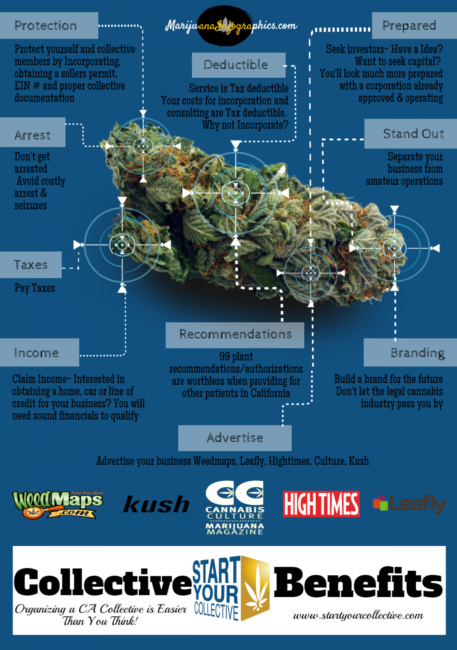 California Collective Infographic