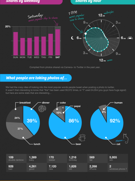 Camera + App Road To 3 Million Downloads Infographic