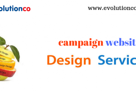 Campaign Website Development Services Mumbai Infographic
